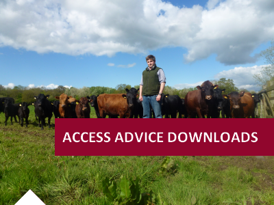 ACCESS ADVICE DOWNLOADS